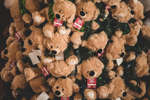 Close-up Photography of Brown Bear Plush Toy Lot