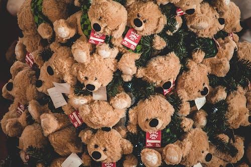 armağanlar, ayı, çocuk oyuncakları, çocuklar içeren Ücretsiz stok fotoğraf