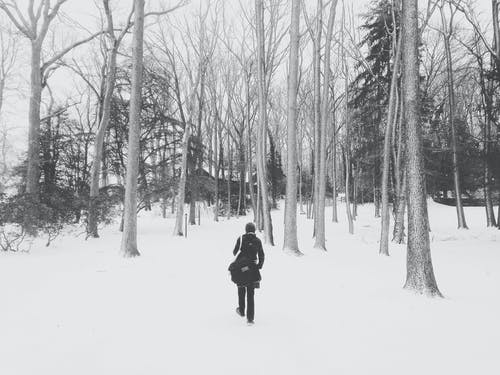 Free stock photo of cabin, snow, trees, woman