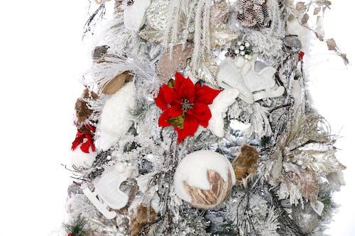 Darmowe zdjęcie z galerii z boże narodzenie, choinka, kartka świąteczna, prezenty świąteczne