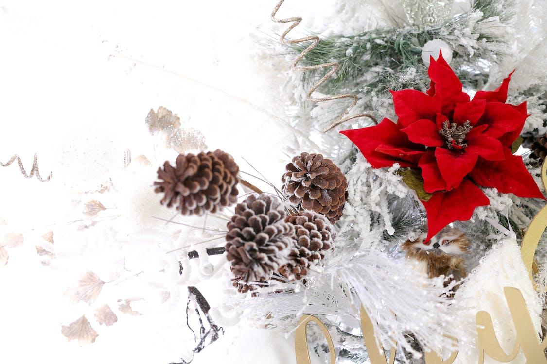 hó, Karácsony, karácsonyfa