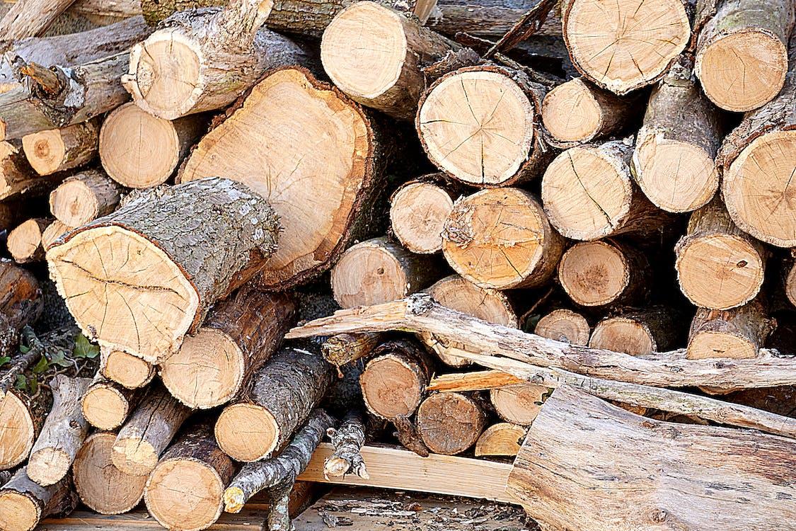 切, 切碎的, 切碎的木頭