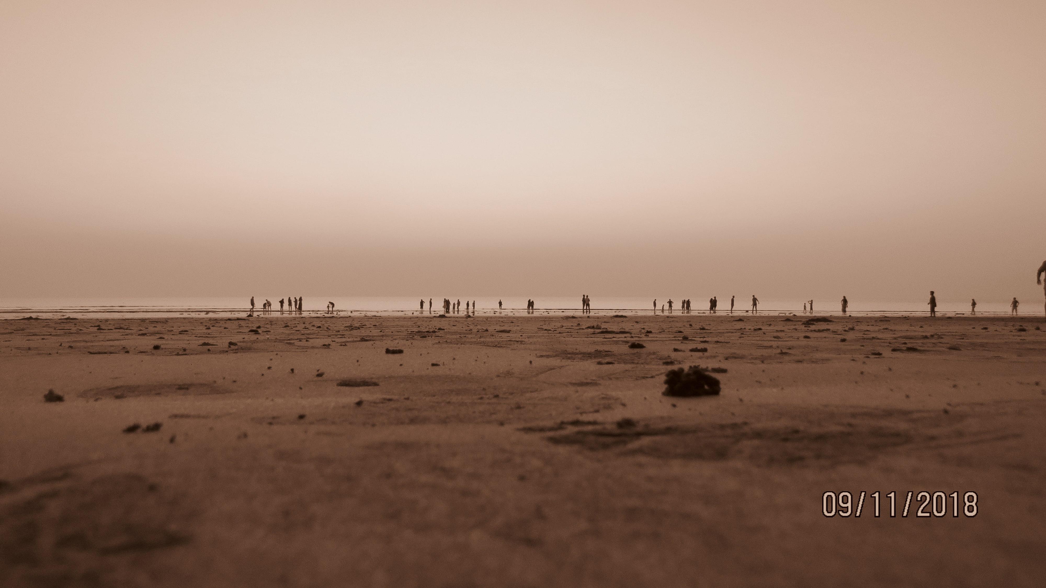 Foto Gratuita Di Fronte Spiaggia Sfondi In Hd Sfondo 4k