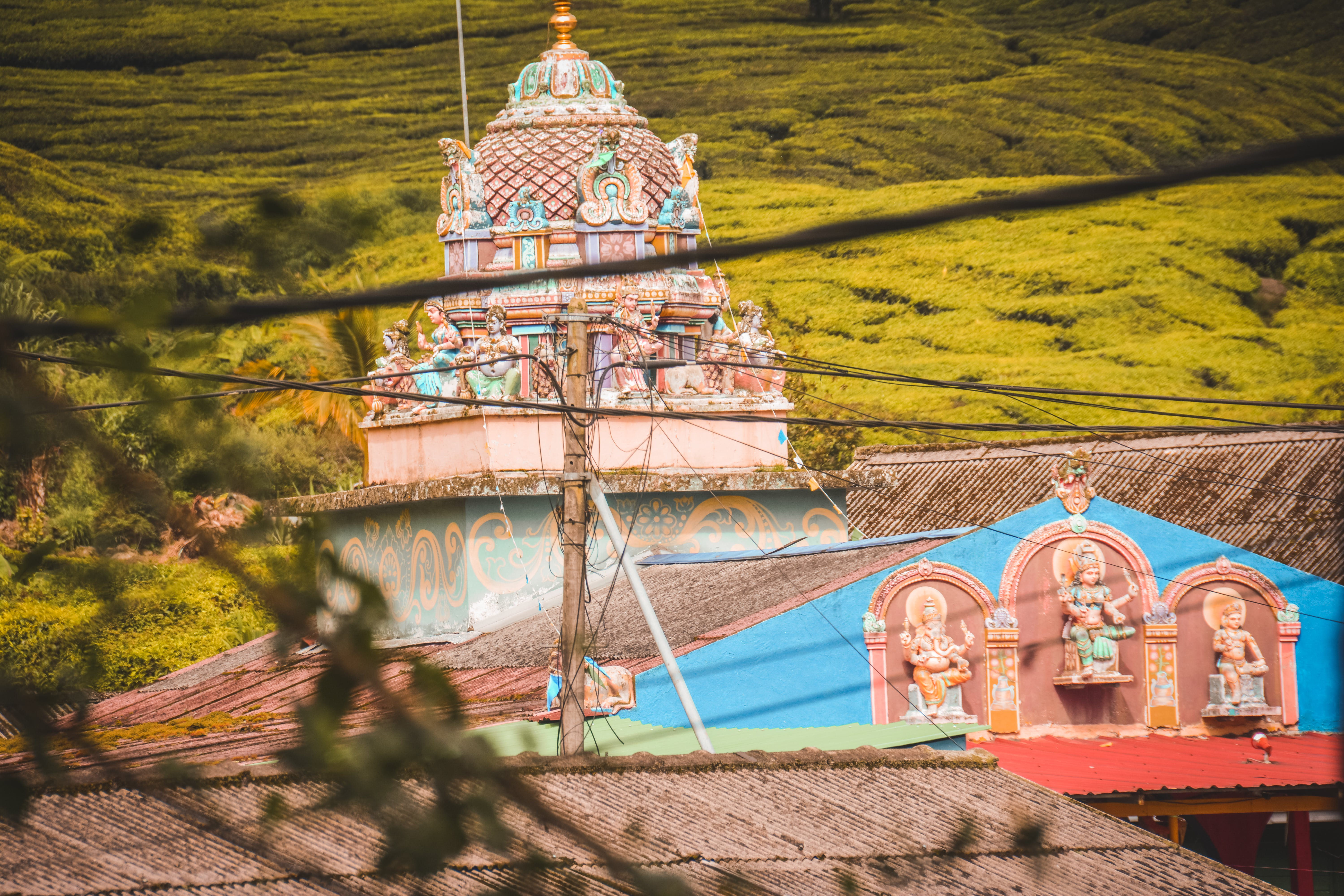 Free stock photo of bukitbrinchang, cameronhighlands, hindu, hinduism