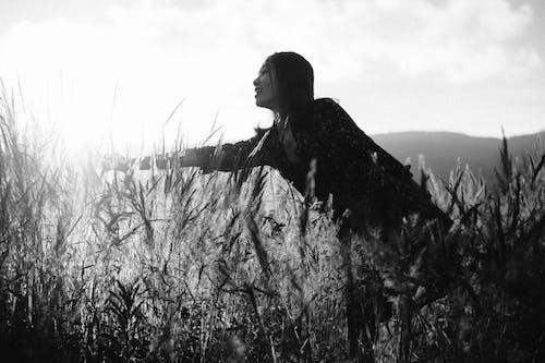 光, 女人, 接觸, 草 的 免费素材照片