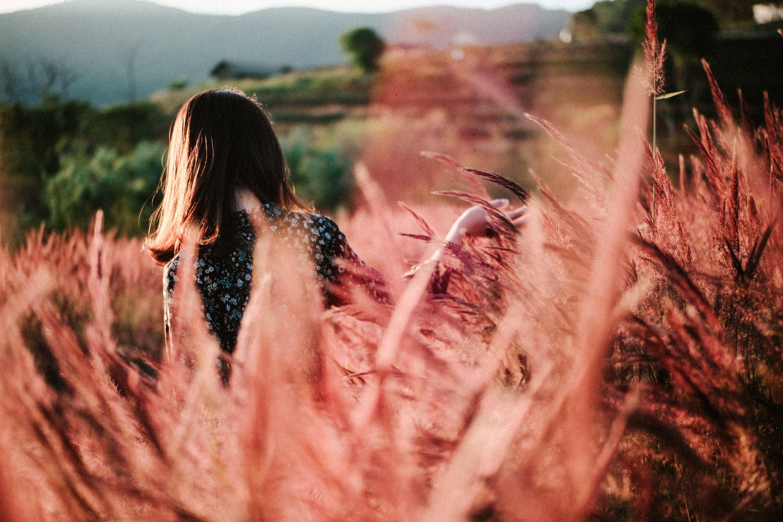 Foto profissional grátis de canas, de volta, flores, mulher