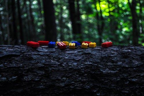 Free stock photo of lego on the log