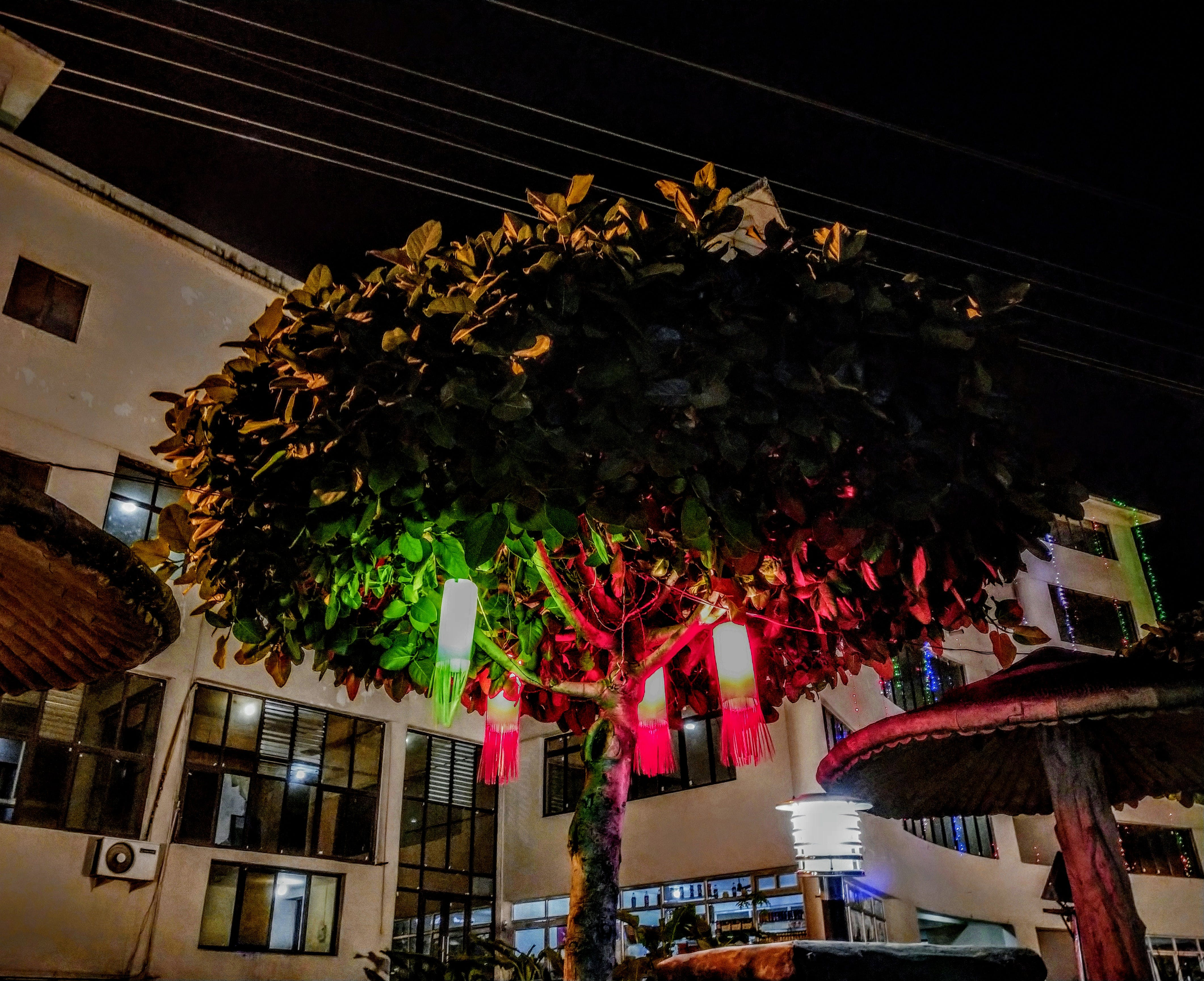 Free stock photo of christmas decoration, christmas lights, tree top