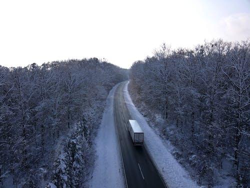 Ilmainen kuvapankkikuva tunnisteilla flunssa, joulu, kuorma-auto, lopuille
