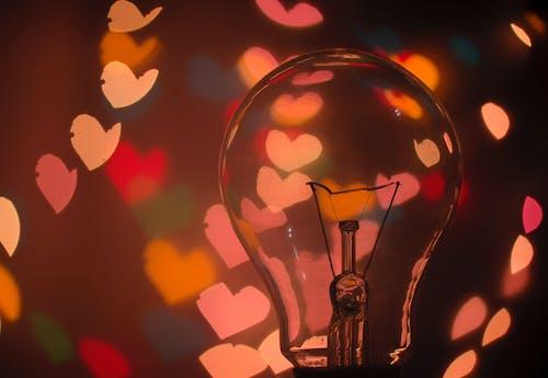 宏觀, 心, 心形, 心臟 的 免費圖庫相片