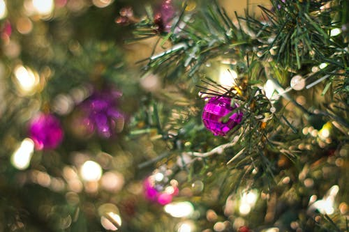 Christmas Tree With Purple Baubles