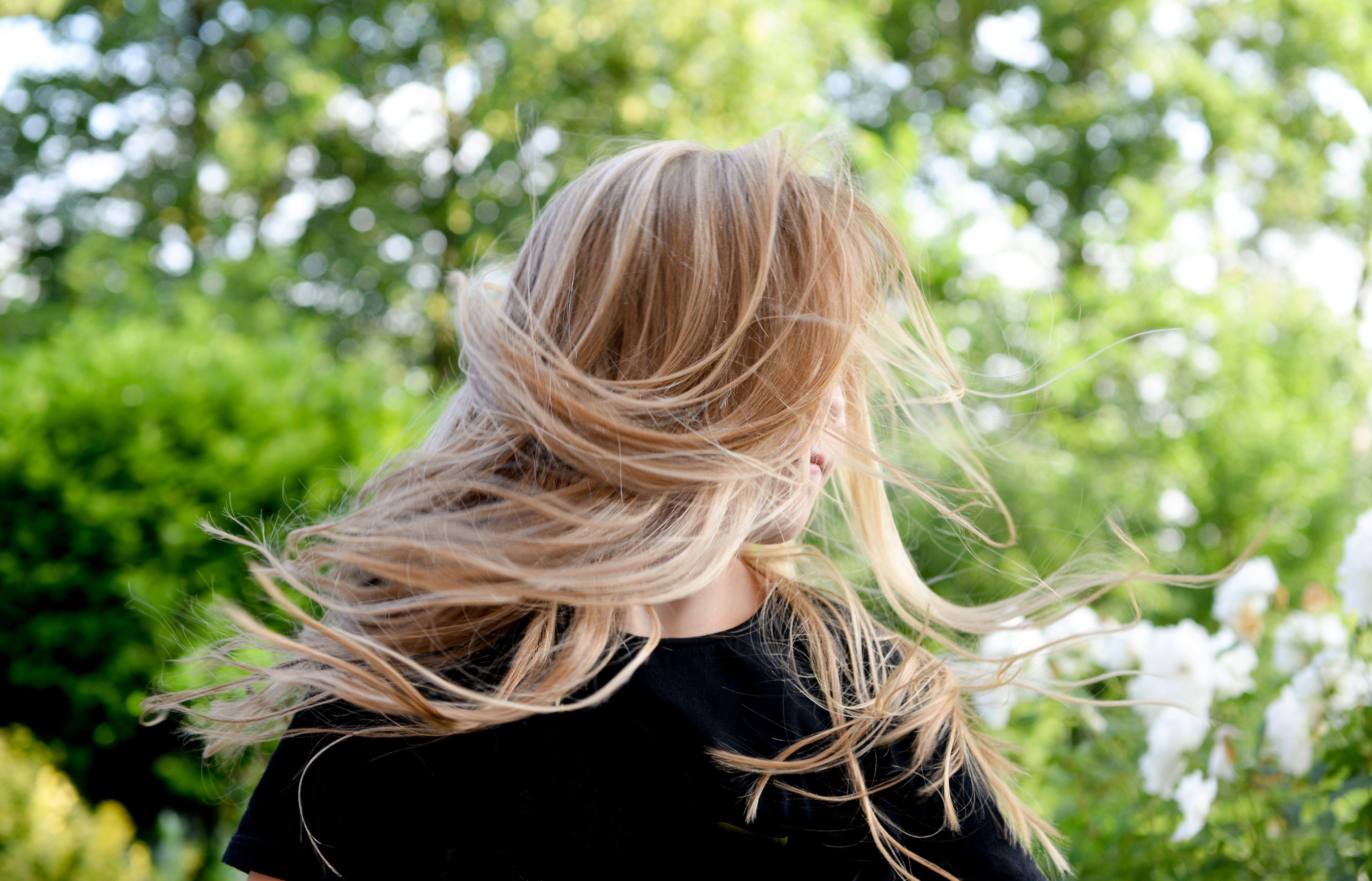 Foto profissional grátis de cabelo, cabelo loiro, loiro, mulher