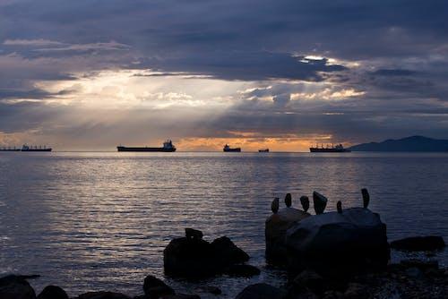 Foto d'estoc gratuïta de alba, amb silueta, calma, capvespre