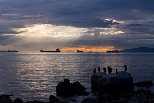 Fotos de stock gratuitas de amanecer, calma, cielo, costa