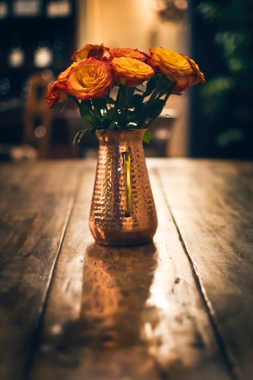 Ilmainen kuvapankkikuva tunnisteilla kasvikunta, kukat, kukinta, maljakko