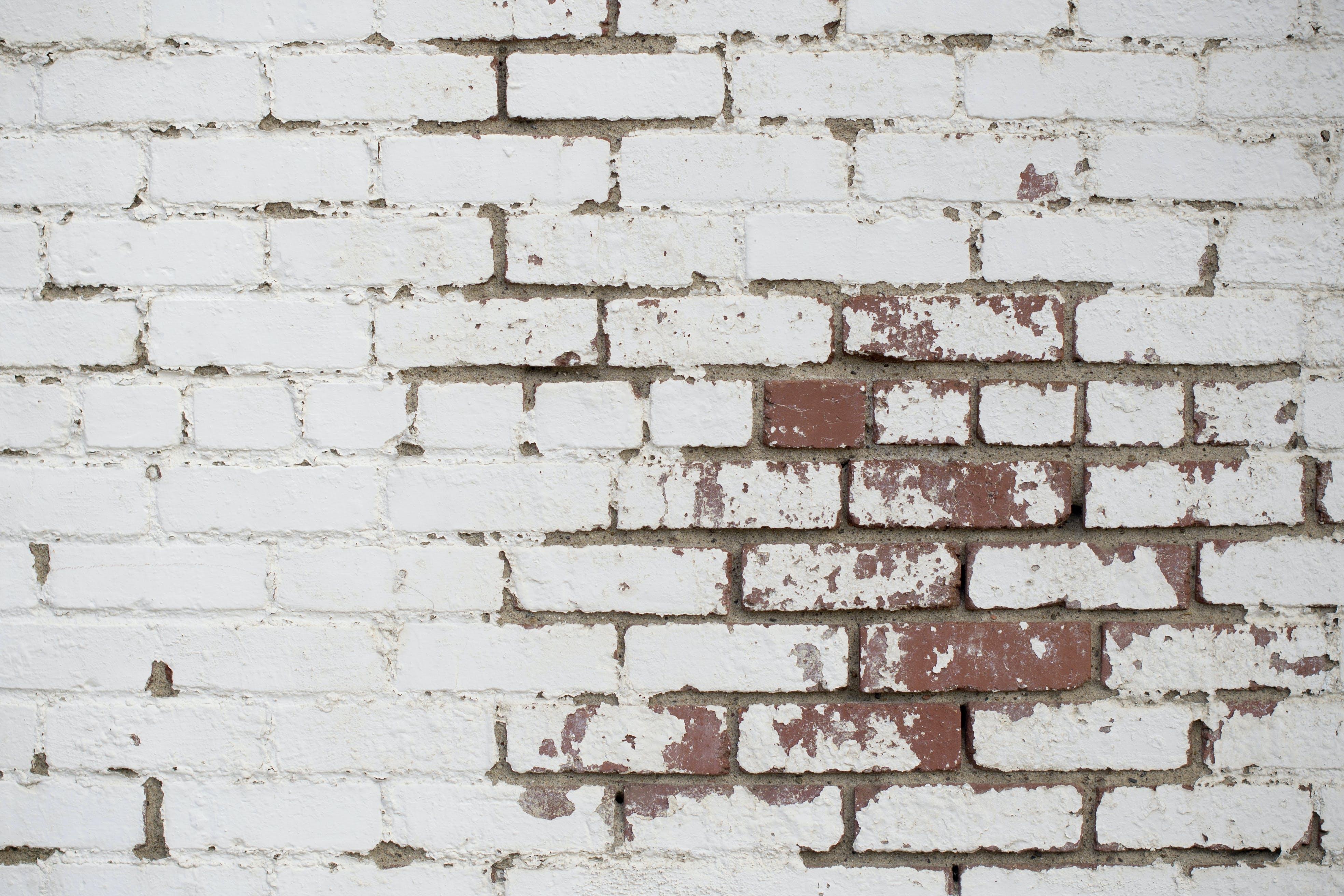 Kostenloses Stock Foto zu backsteinmauer, mauer, oberfläche, ziegel
