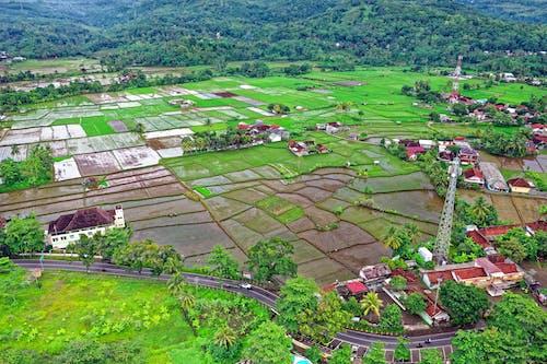 Darmowe zdjęcie z galerii z gospodarstwo, indonezja, pole, widok z lotu ptaka