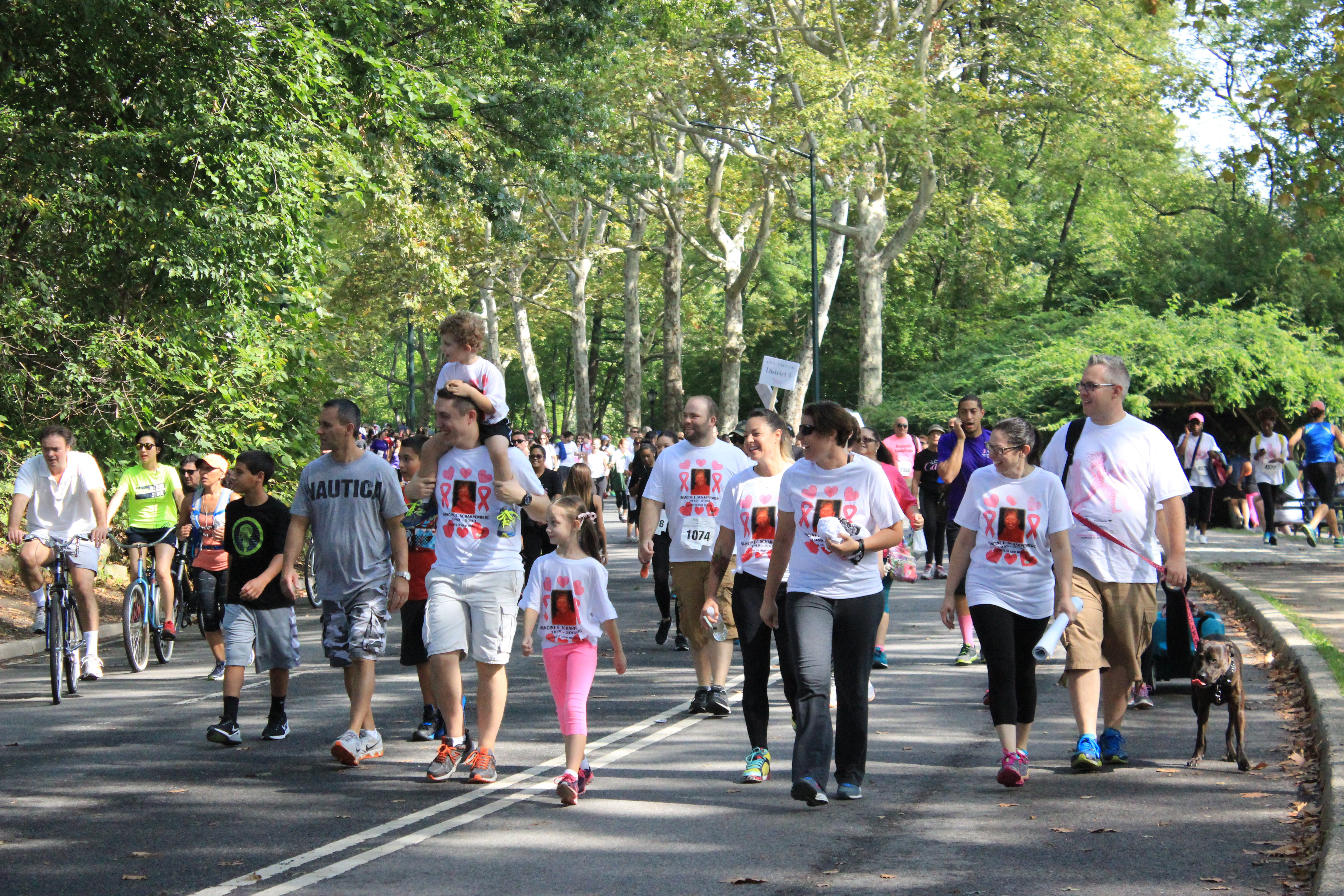 Free stock photo of cancer walk, causes, central park, new york