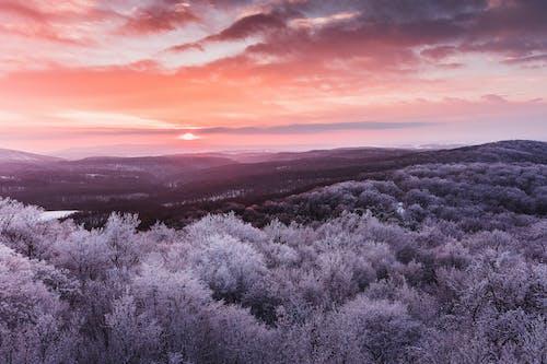 天性, 山, 日出, 日落 的 免费素材照片