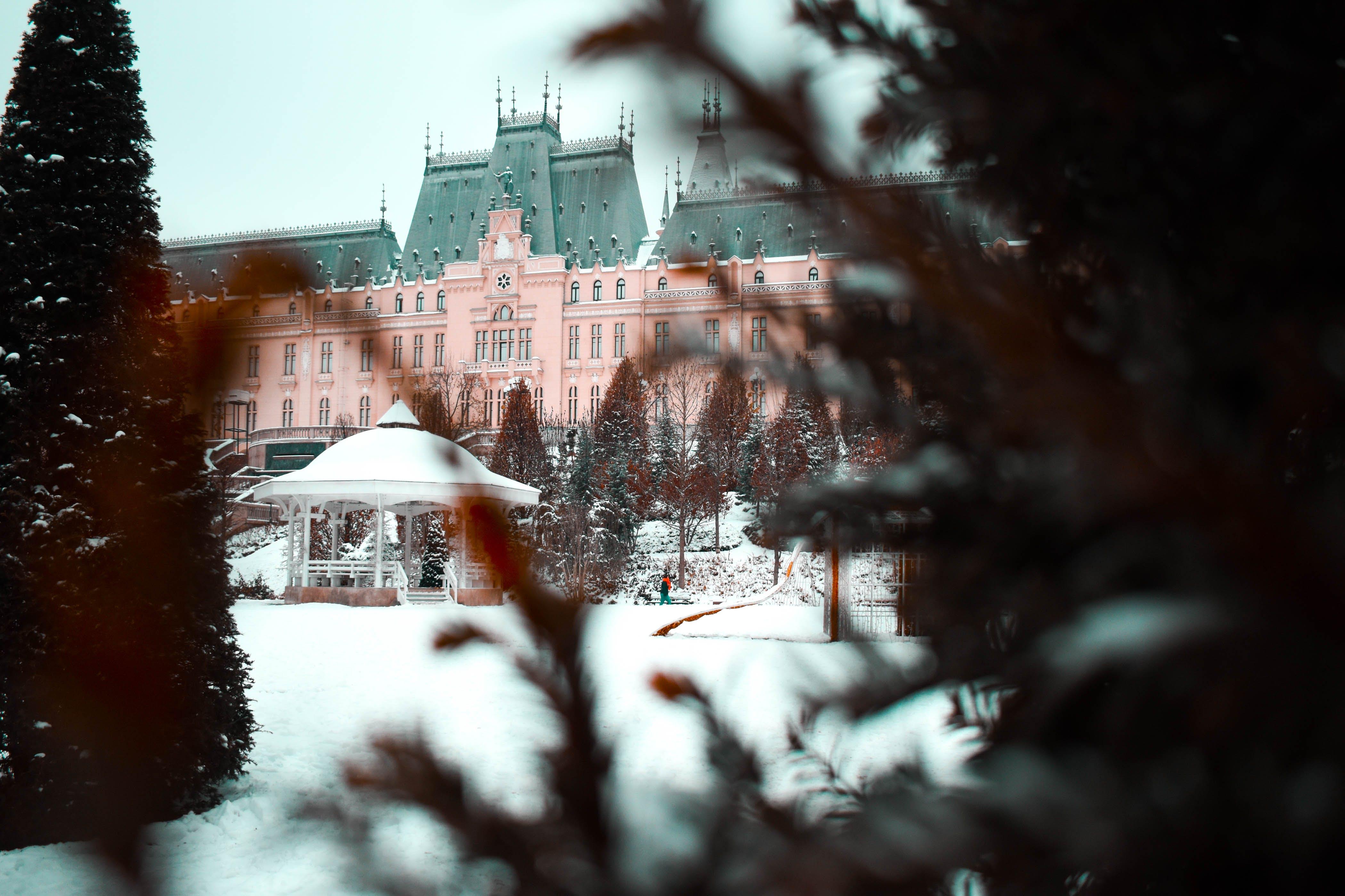 Foto d'estoc gratuïta de arbres, arquitectura, blanc, castell