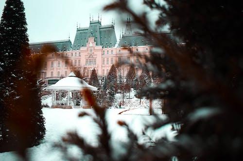 Gratis stockfoto met architectuur, avond, bevroren, bomen