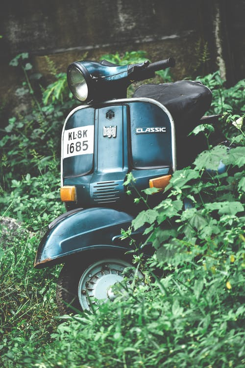 Photo of Parked Scooter in Woods