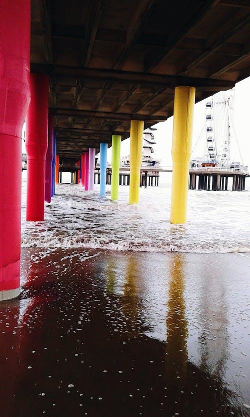 scheveningen, オーシャンビュー, コールド, ビーチの無料の写真素材
