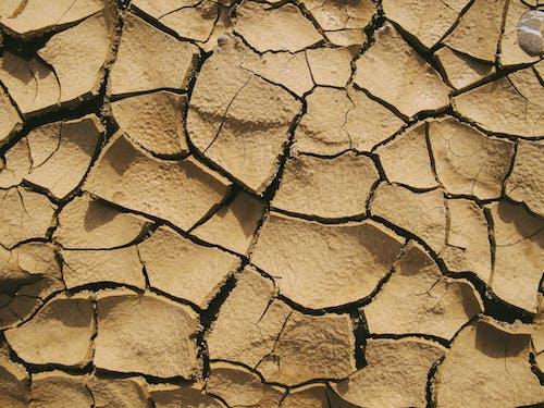 Ilmainen kuvapankkikuva tunnisteilla aavikko, halkeamat, jauhettu, karu