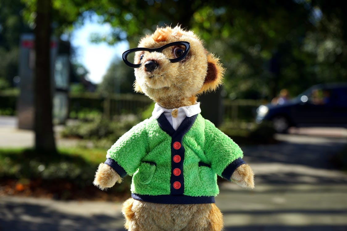 Focus Photo of Brown Animal Plush Toy in Green Jacket and Eyeglasses