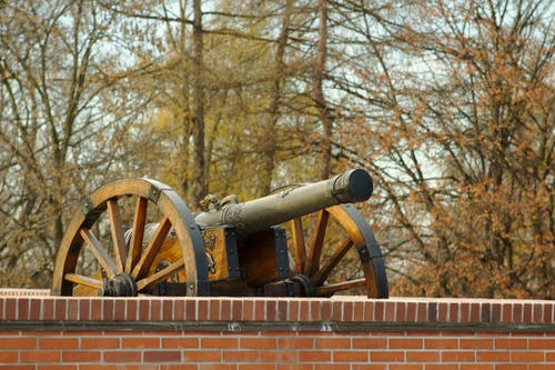 Free stock photo of cannon, forest, trees, wall