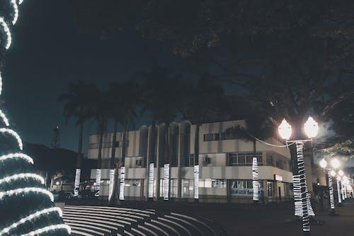 คลังภาพถ่ายฟรี ของ กลางคืน, คริสต์มาส, ศูนย์, เมือง