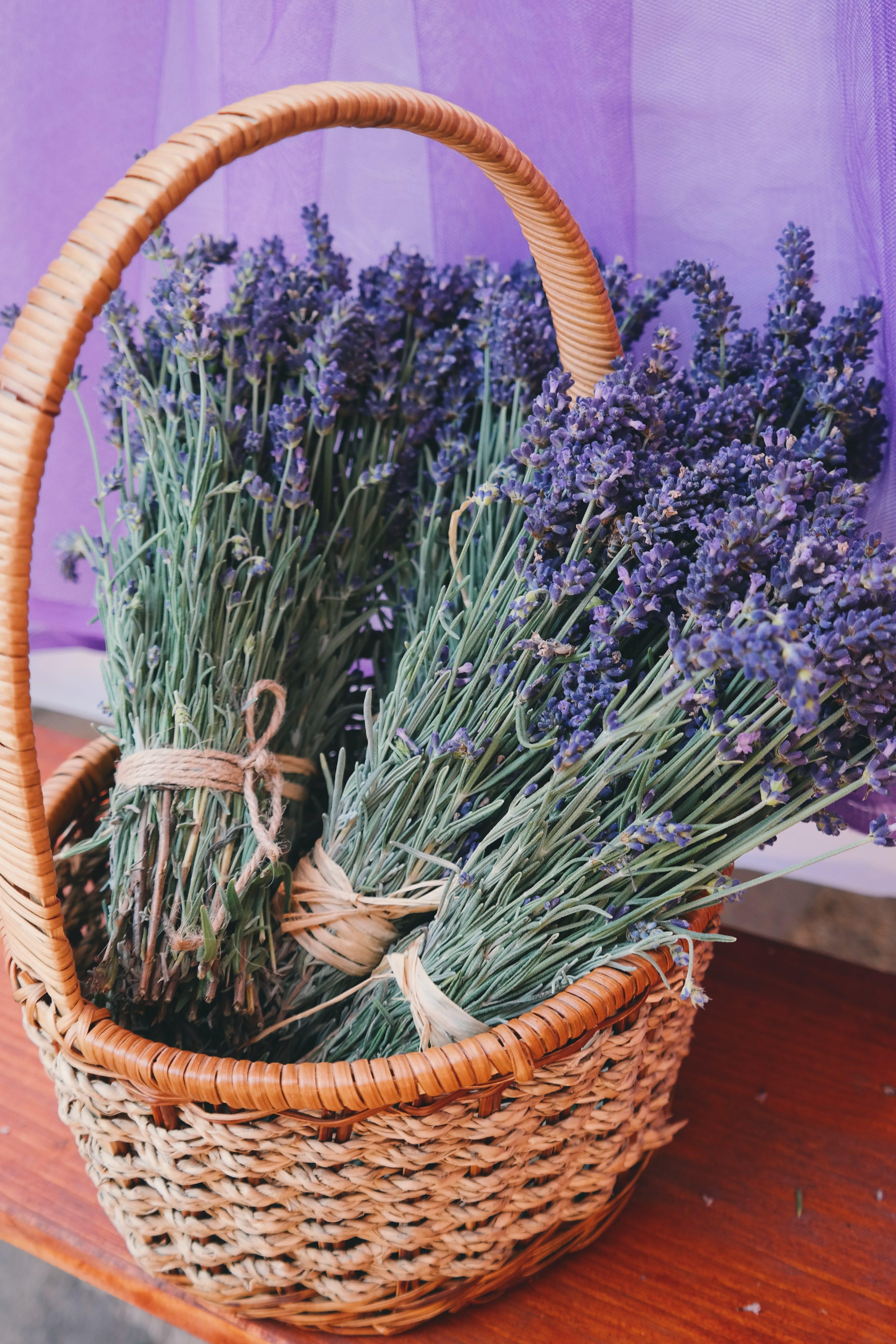 Lavender Flowers in Woven Basket