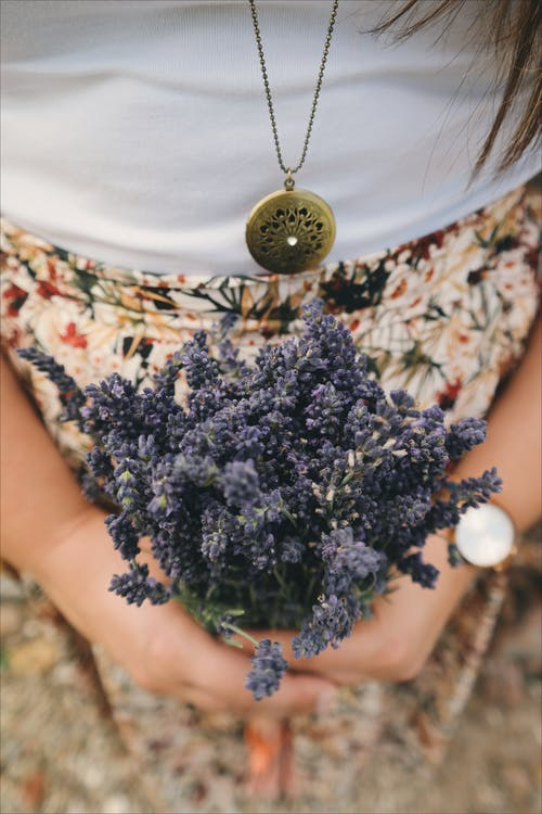 Person Holding Bundle of Purple Flowers