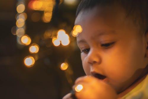 Ảnh lưu trữ miễn phí về con gái, đèn, đứa bé, giáng sinh