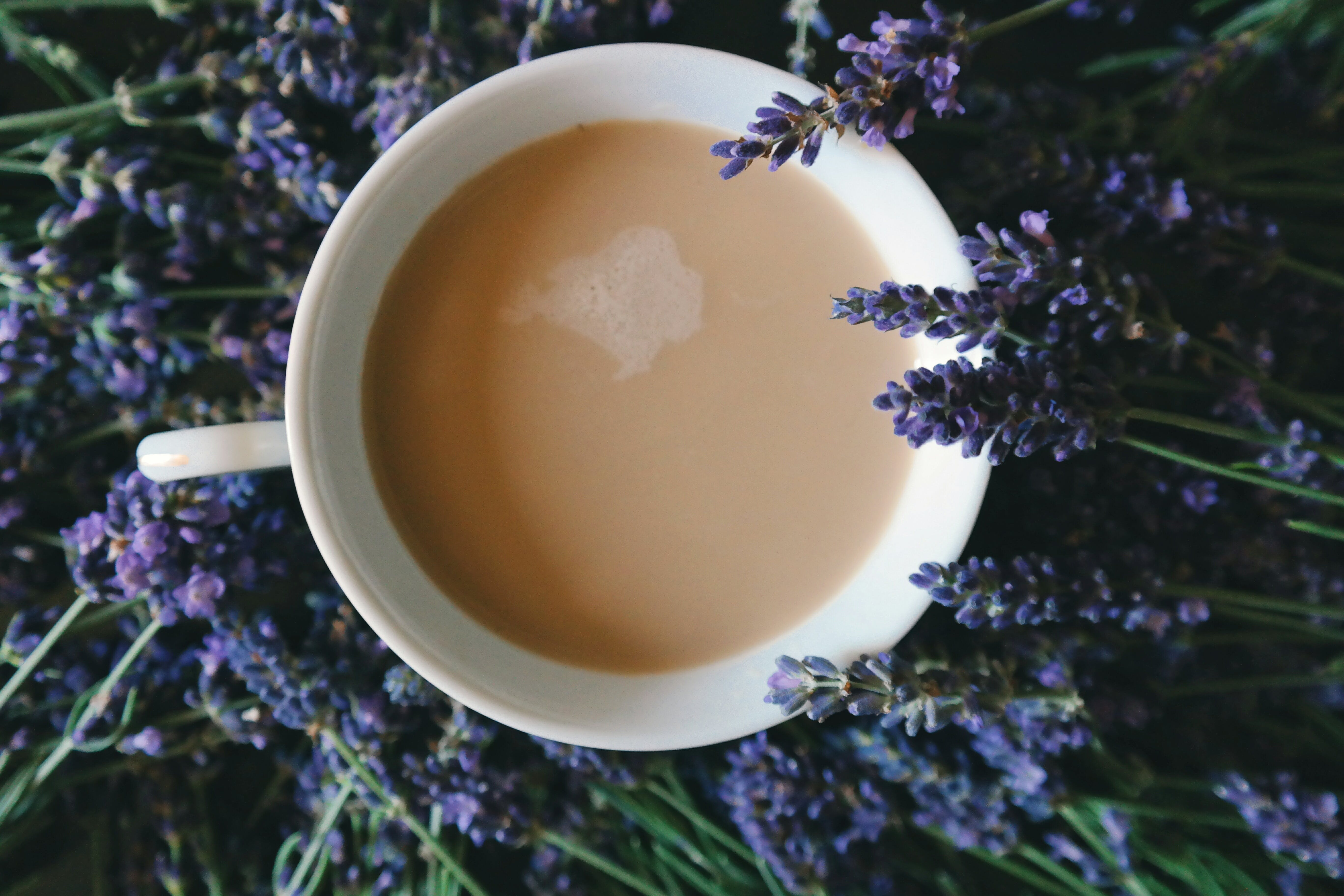 Coffee Filled on Mug Surrounded by Purple Flowers