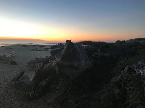 Immagine gratuita di costa dell'oregon, oceano, oregon