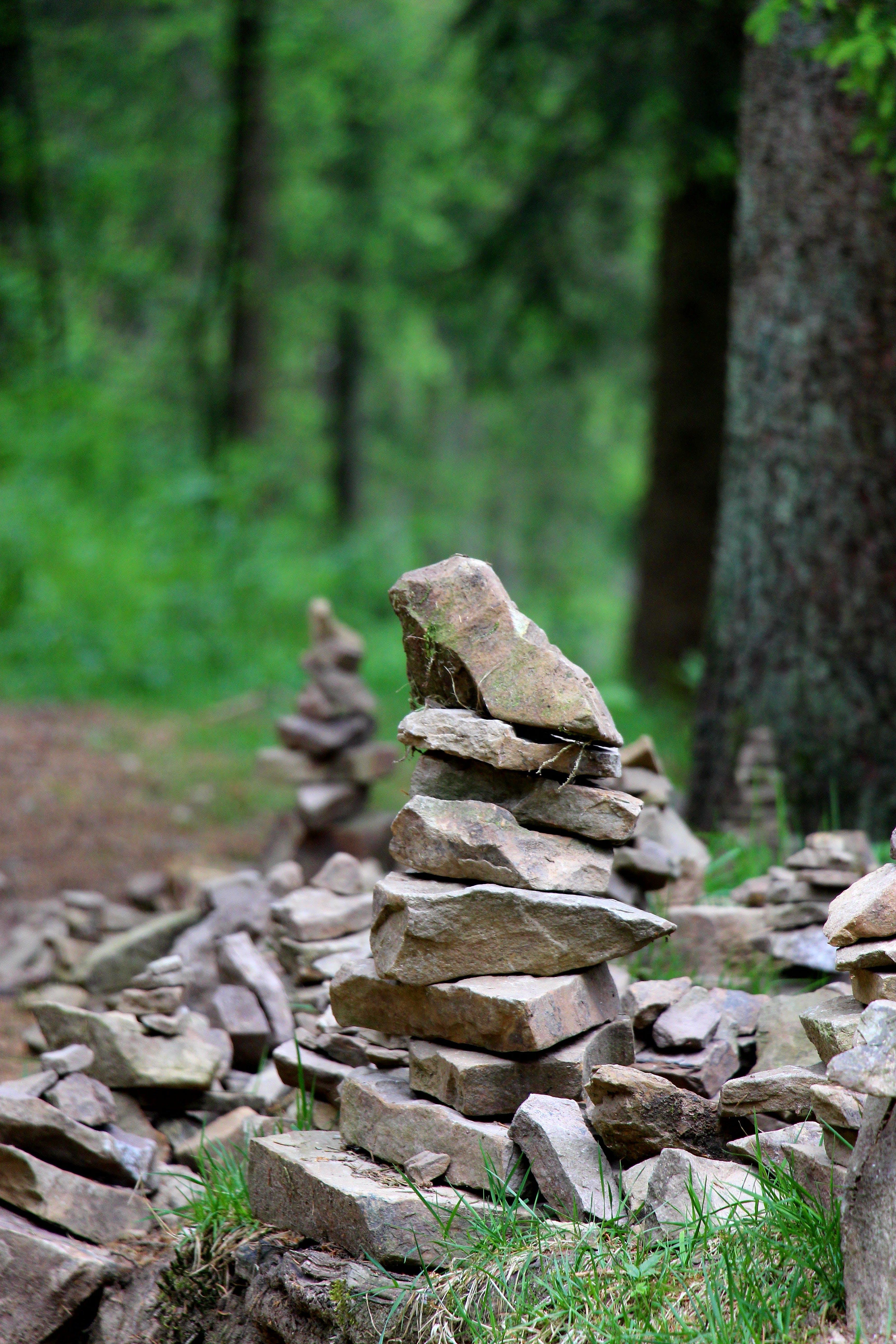 Gratis stockfoto met balancerende rots, hout, rotsen, steenhoop rotsen