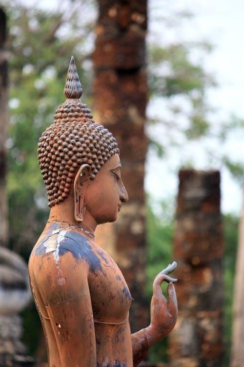 Foto stok gratis adat istiadat, agama, Agama Buddha, Allah