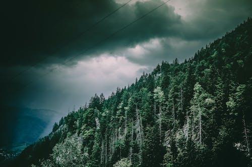 Kostnadsfri bild av berg, landskap, miljö, molnig