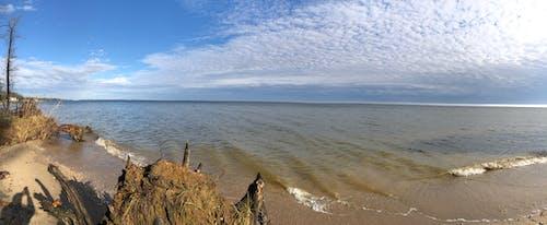 Immagine gratuita di baia, oceano, passeggiata mattutina