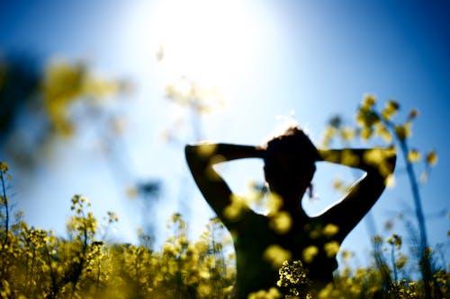 Gratis stockfoto met gele bloem, knappe vrouw, lentebloem, mooie bloem