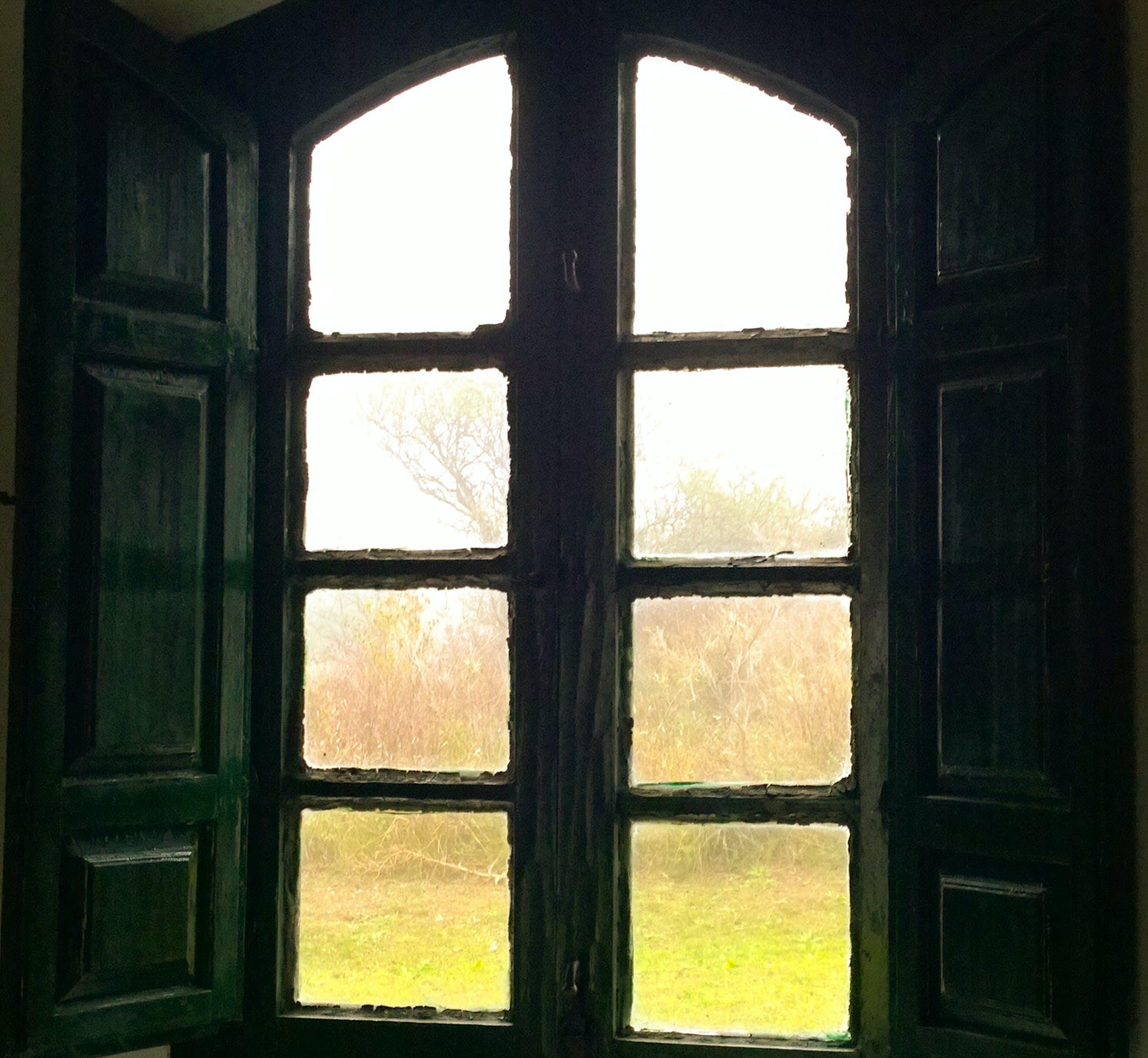Free stock photo of fog, old, window