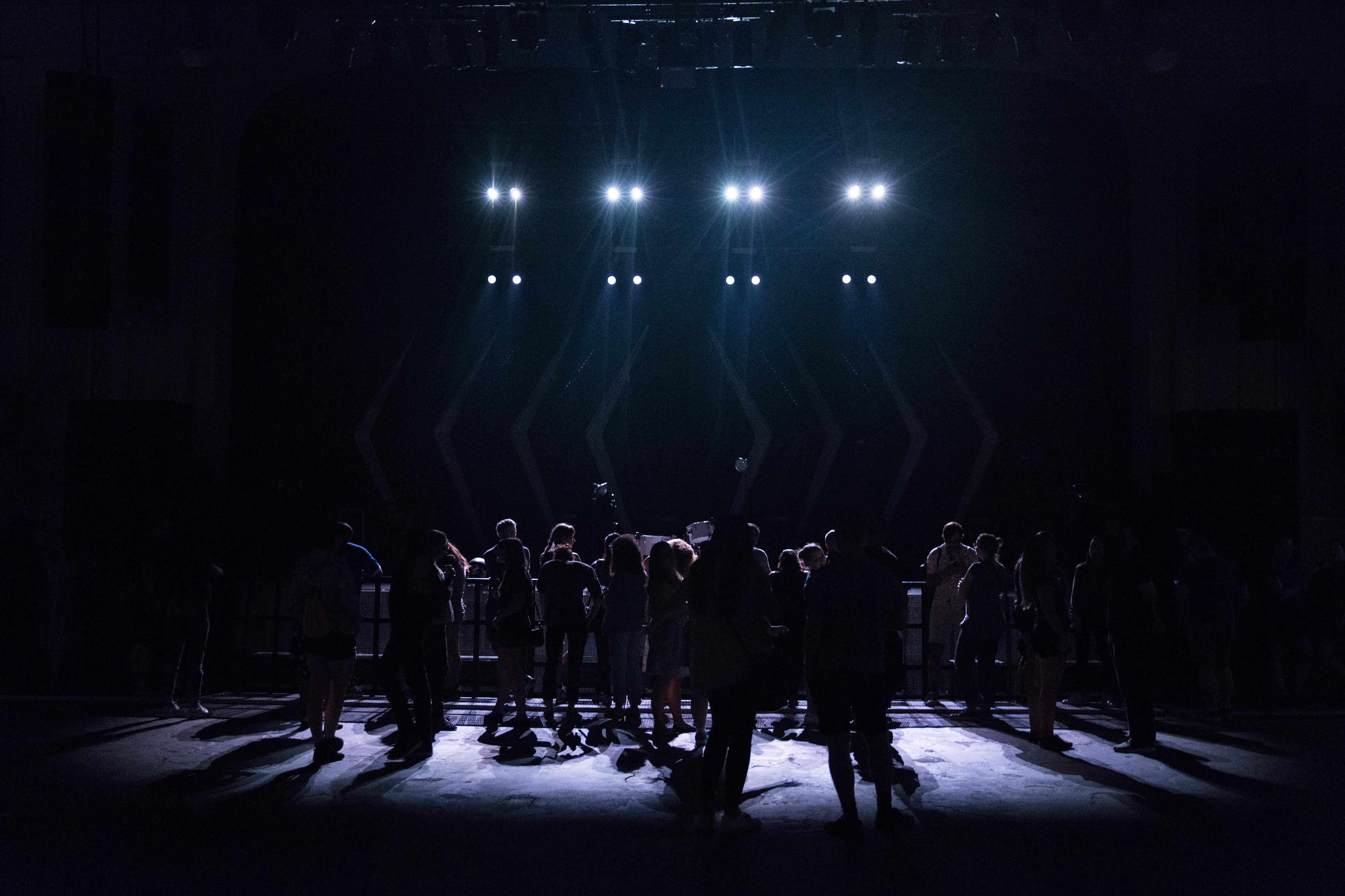 Silhouette Photography of People on Theater