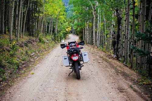 Kostnadsfri bild av asp, aspen träd, äventyr, backcountry