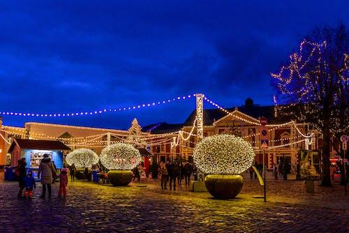 день отдыха, зима, рождество içeren Ücretsiz stok fotoğraf