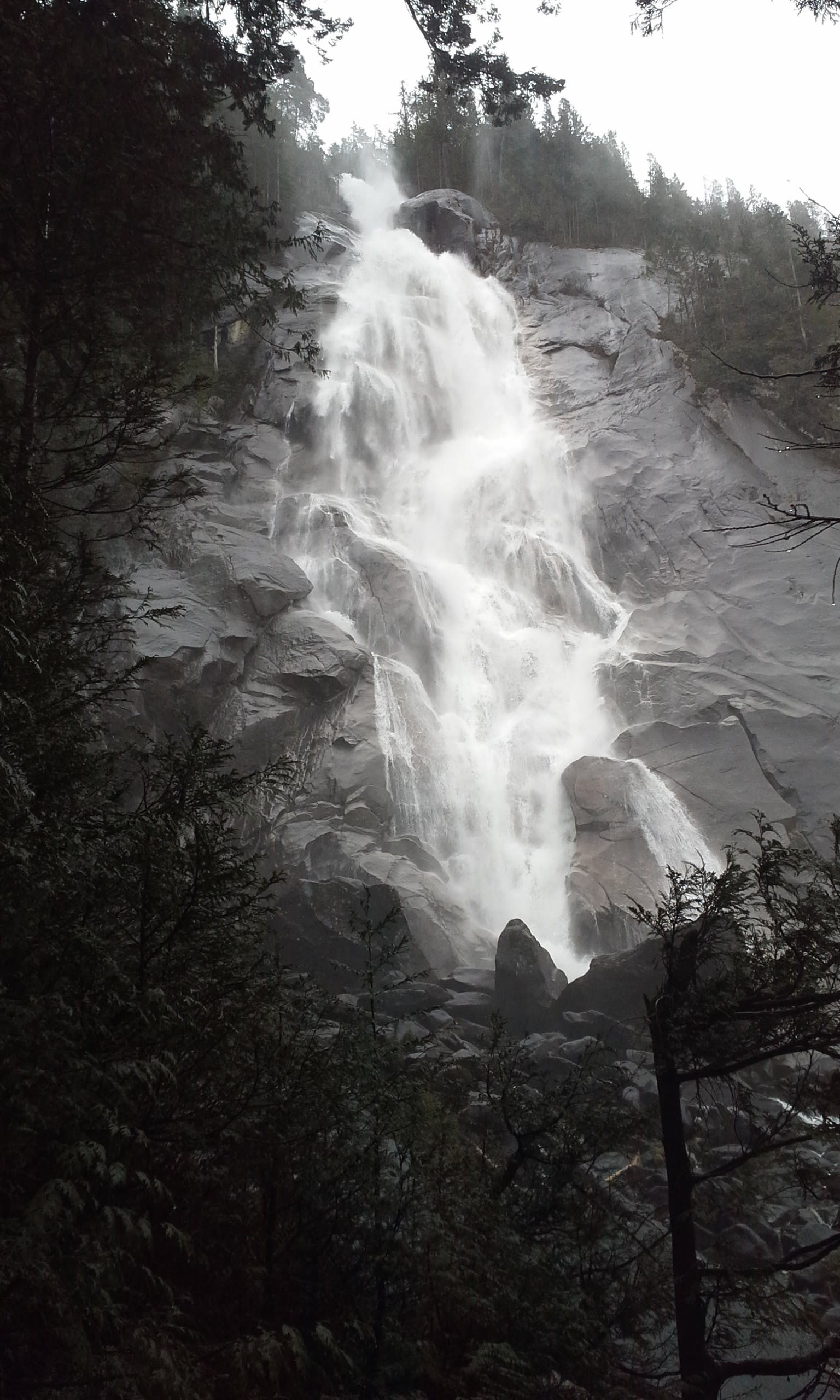 Photography of Nature Falls Near Forest