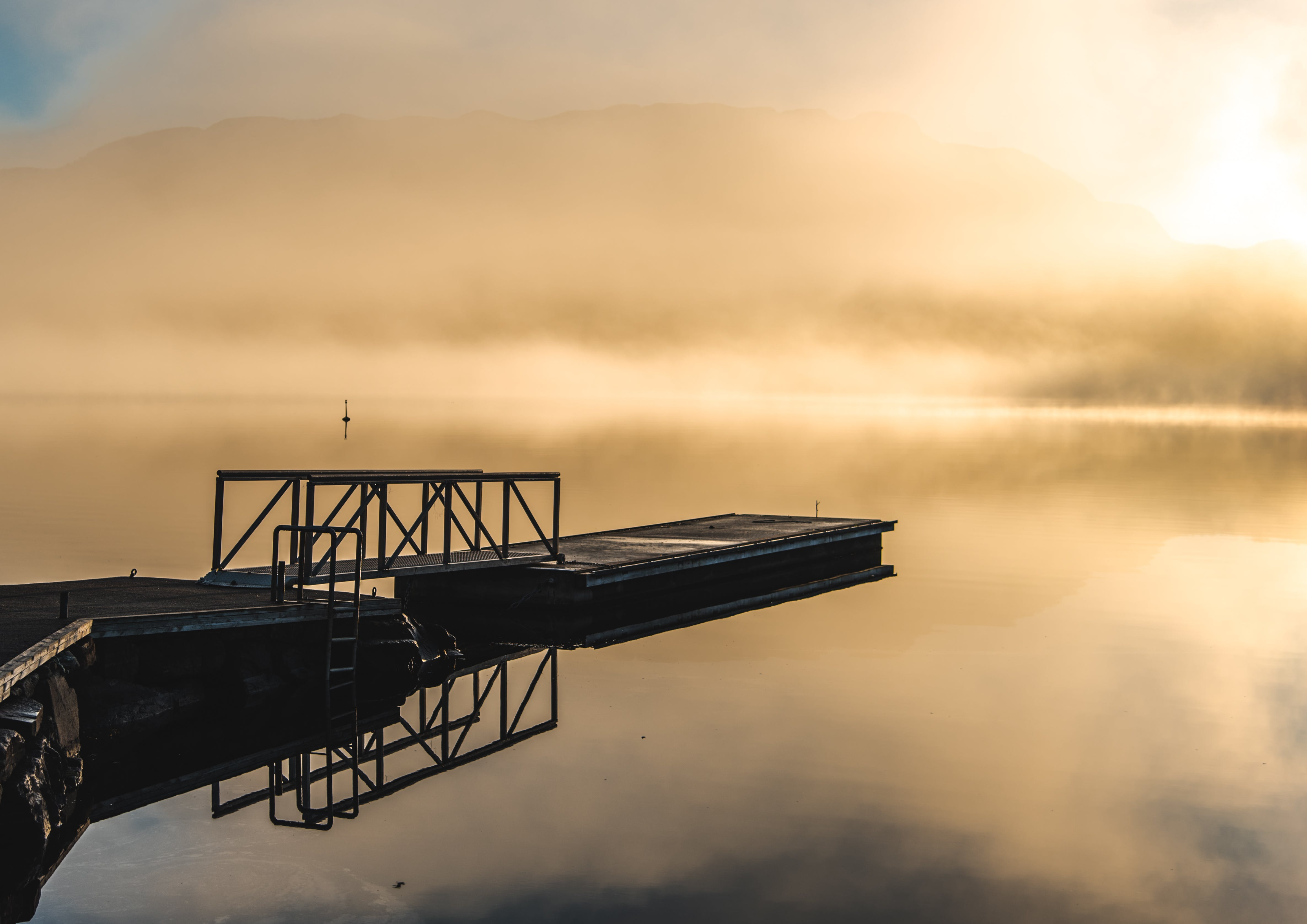 Free stock photo of clear water, fog, foggy, foggy morning