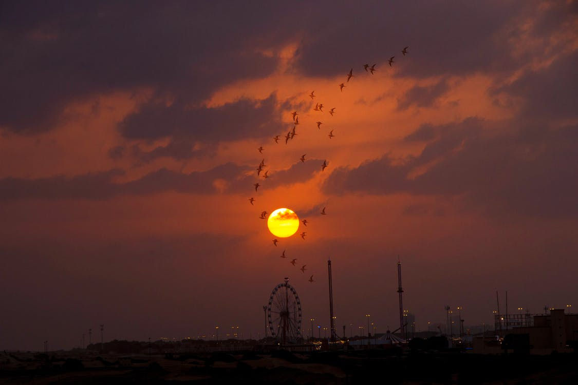 dubai, golden sun, sunset