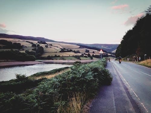 天性, 田, 英國, 路 的 免费素材照片