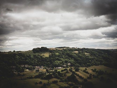 Immagine gratuita di alberi, ambiente, cielo, cielo coperto